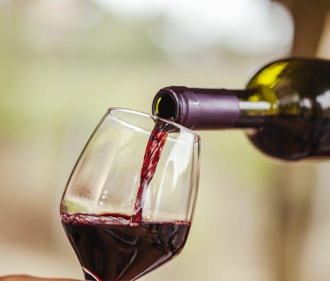 Otra gigante china entra al mapa vitivinícola chileno y compra el 12,5% de Viña San Pedro, en US$ 66 millones